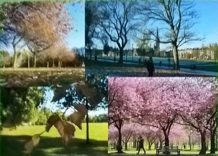 Four Seasons on the Meadows and Bruntsfield Links